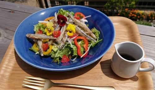 野菜たっぷり!キビナゴの彩りサラダ