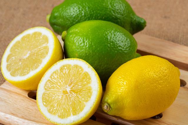 【収穫体験】レモン狩りご予約受付中