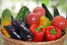 物産館へのお野菜・果物の生産出荷者さま募集中