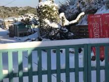 【開園状況】1/10(日)積雪で一部営業縮小