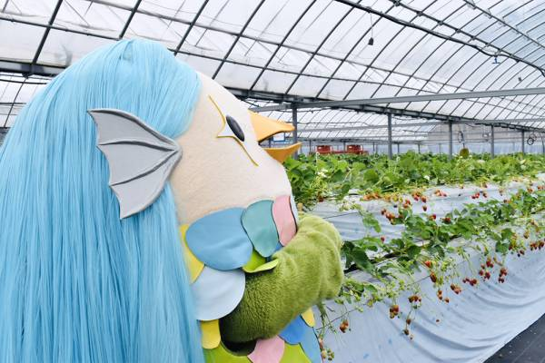 アマビエ様が「農園ガーデン空」に来園されました♪